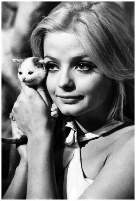Ewa Aulin with Hurricane the Kitten, 1968 Elliott Erwitt