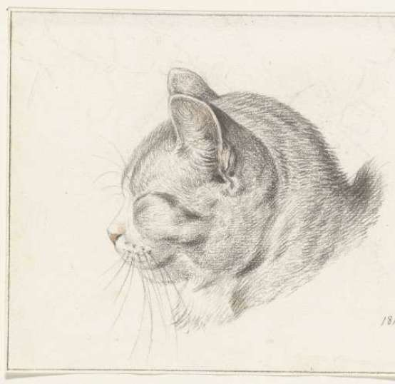 Cat Head Facing Left, 1813, Jean Bernard