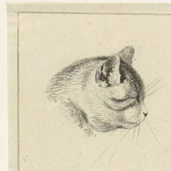 Cat Head Looking Right, 1833, Jean Bernard