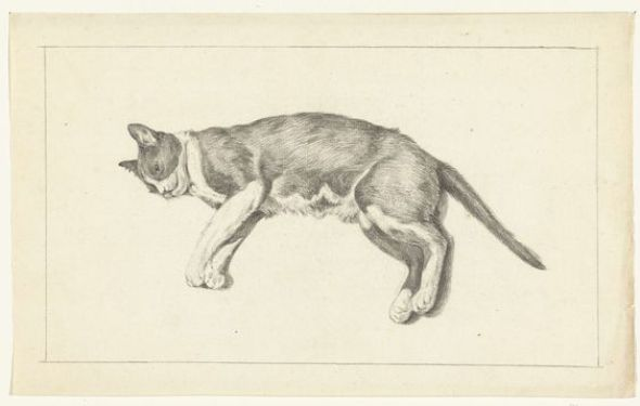 Cat Lying Down, Jean Bernard