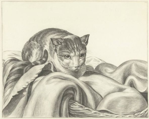 Cat on a Blanket, Jean Bernard 1802 Katze