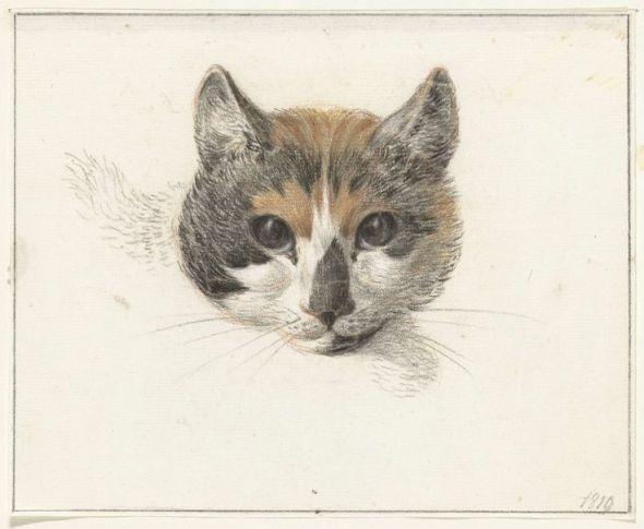 Jean Bernard Cat Head 1819