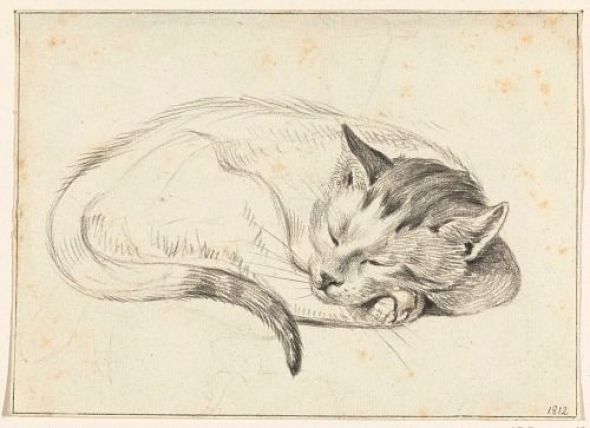 Jean Bernard Sleeping Cat 1812