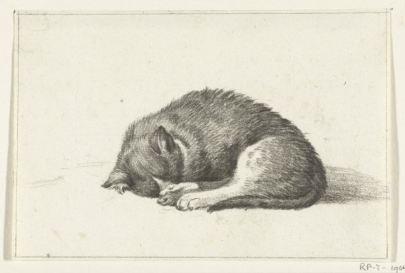 Sleeping Cat, Jean Bernard