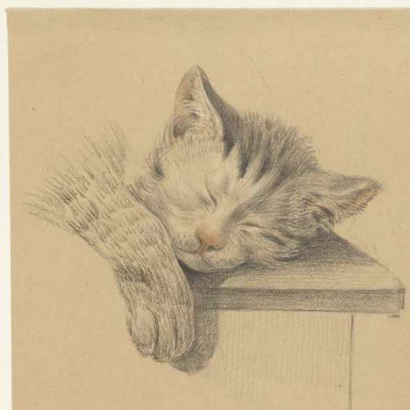 Sleeping Kitten, Jean Bernard