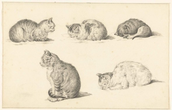 Study of Cats, Jean Bernard