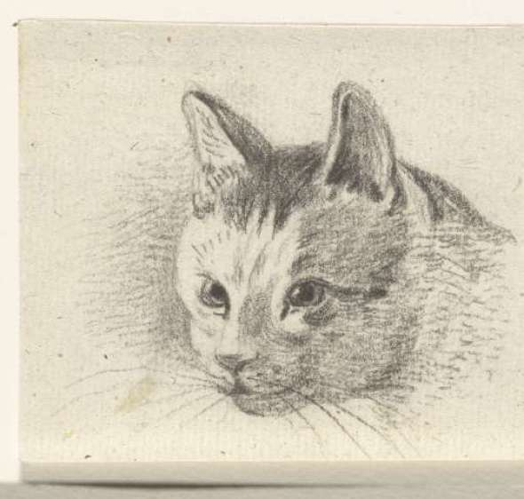 head of a cat, Jean Bernard