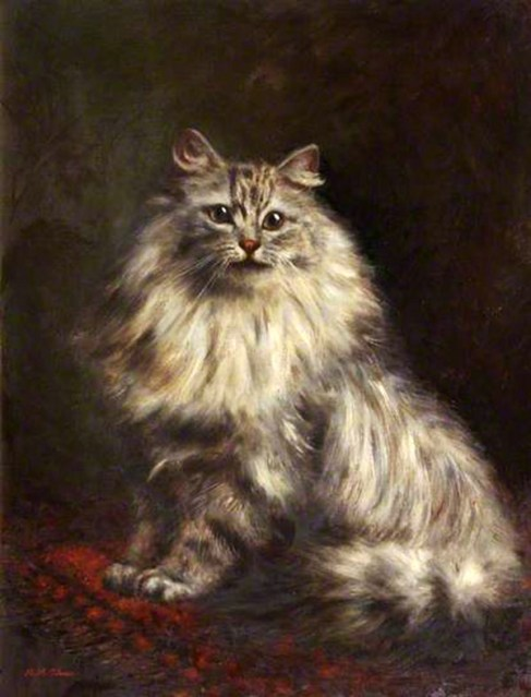 Grey Persian, Agnes Augusta Talboys