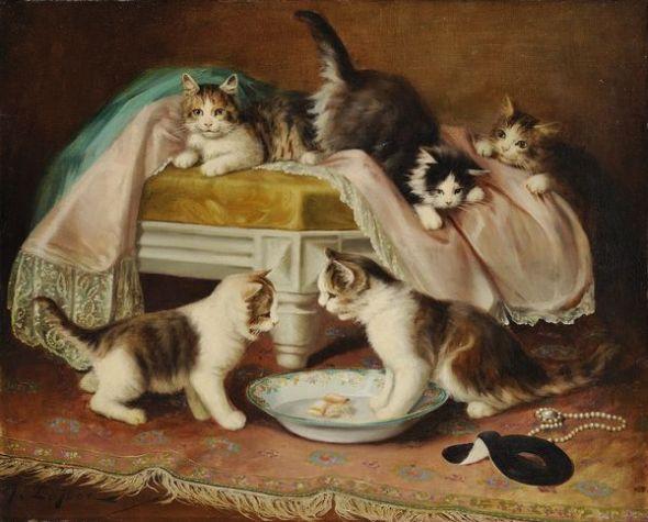 Jules Le Roy, Cats