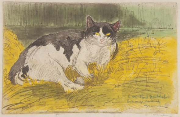 Black and White Cat, Theophile-Alexandre Steinlen