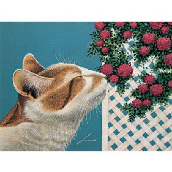 Lowell Herrero, Cat Sniffing the Flowers