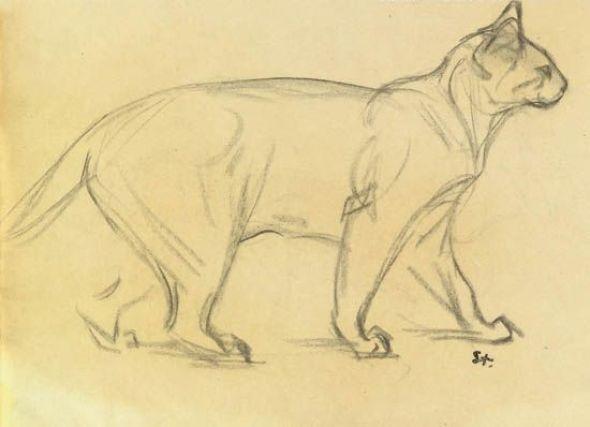 Théophile-Alexandre Steinlen (1859-1923) - Study of a cat walking