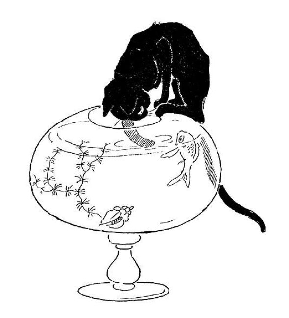 Theophile Steinlen, Des chats2