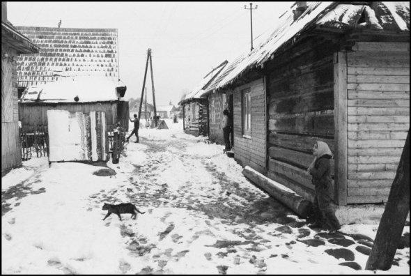 Ferdinando Scianna, Cat in Polish Village 1972