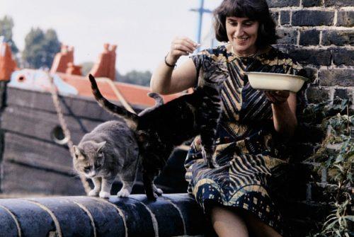 Mary Fedden Feeding Cats