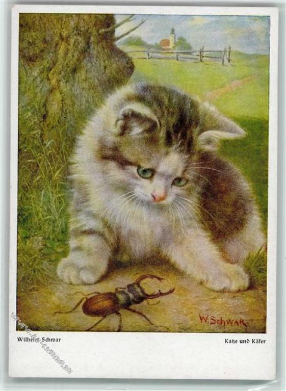 Kitten with Beetle, Wilhelm Schwar