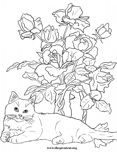Cats and Flowers Coloring Book, LA Vocelle