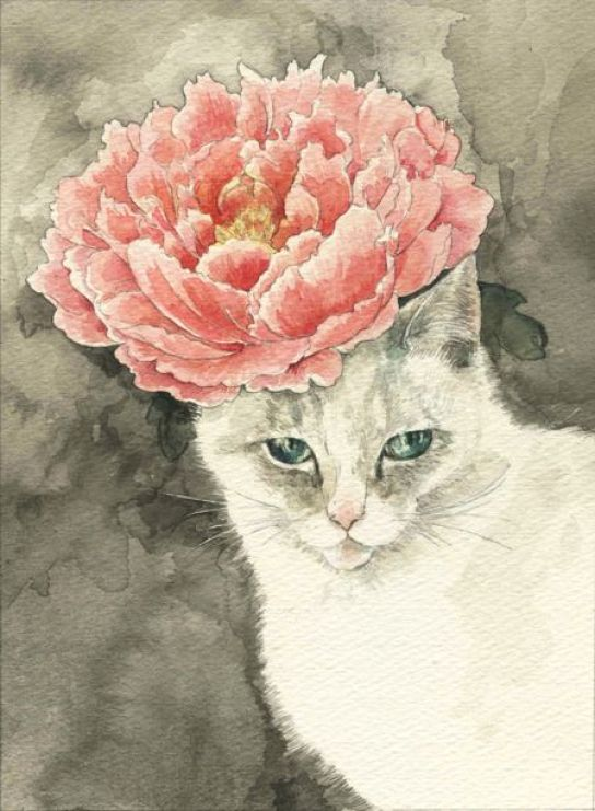Midori Yamada11-White cat with pink flower
