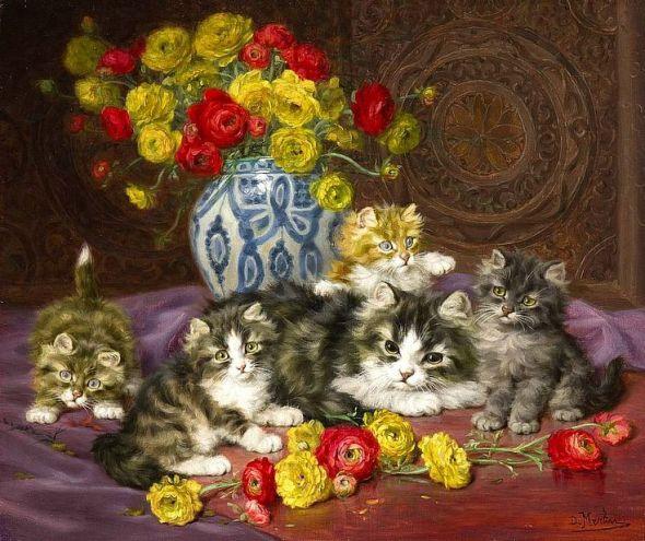 Daniel Merlin kittens and cats
