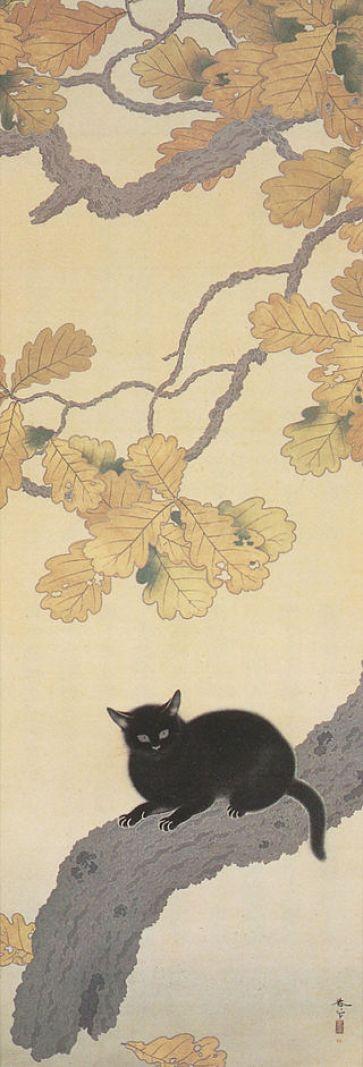 Kuroki Neko, Hishida Shunso