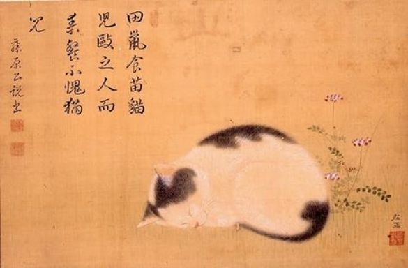 Sleeping cat, Hishida Shunso
