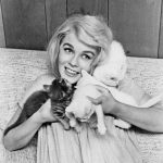 Ann Margret with Cats, famous cat lovers