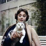 Audrey Hepburn and cat, famous cat lovers