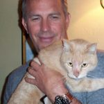 Kevin Costner and cat, famous cat lovers