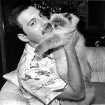 Freddie Mercury and cat