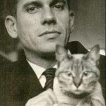 Gerard Reve and cat