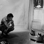 Samuel Beckett Irish writer, dramatist & poet Ireland 1906-1989 with cat