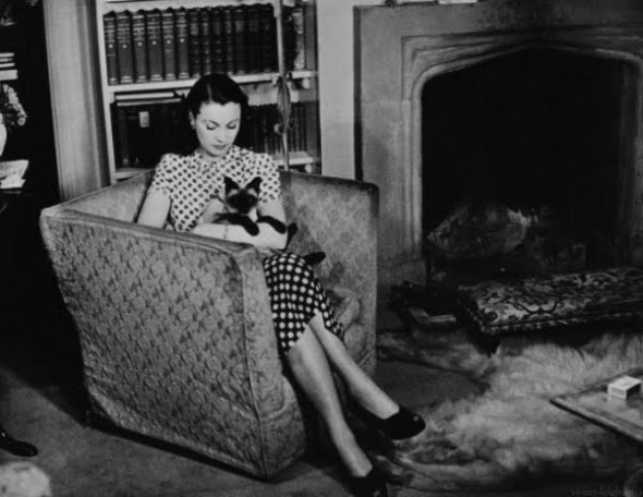 Vivien Leigh and her cat at home, 1946
