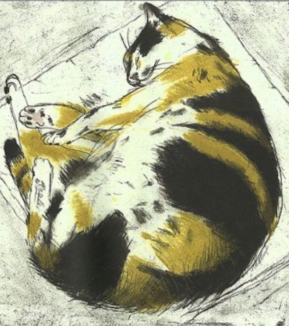 Coco Sleeping sketch of a tortoise cat, 2003 Elizabeth Blackadder