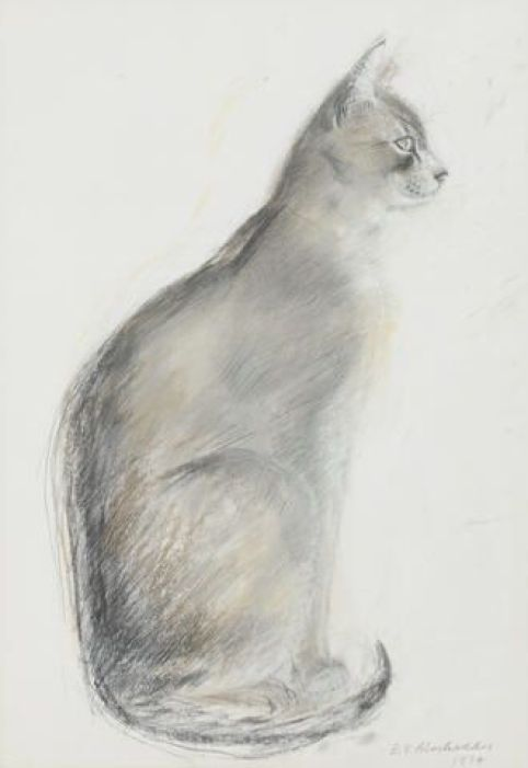 Cat, 1974, Elizabeth Blackadder