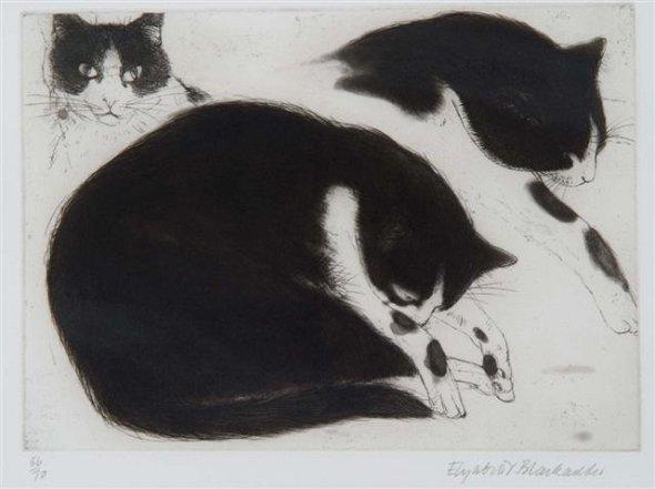 Three Black and White Cats, Elizabeth Blackadder