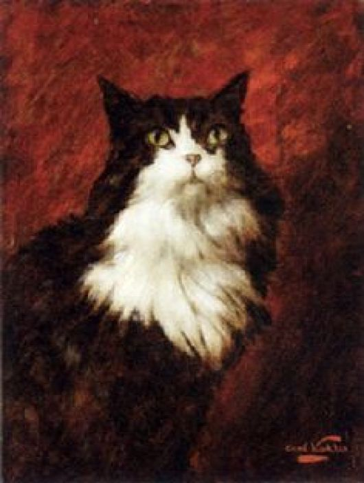 Carl Kahler, Sultan and Red Drape, cat art