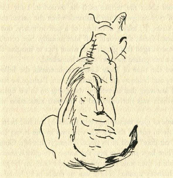 James Mason Cat Illustration 4