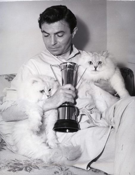 James Mason and Persian Cats