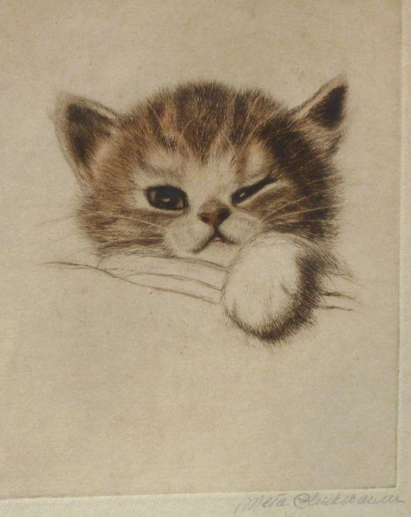 Meta Pluckebaum, Kitten