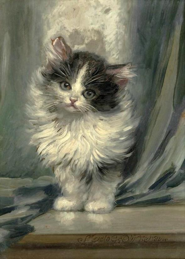 Kitten, Meta Pluckebaum