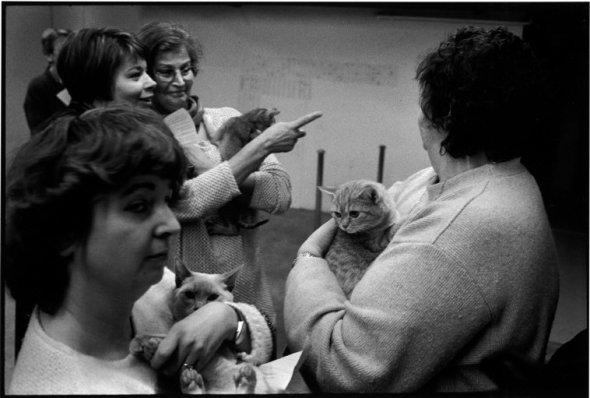 Porte de Champerret, Cat Show, 1998, Richard Kalvar