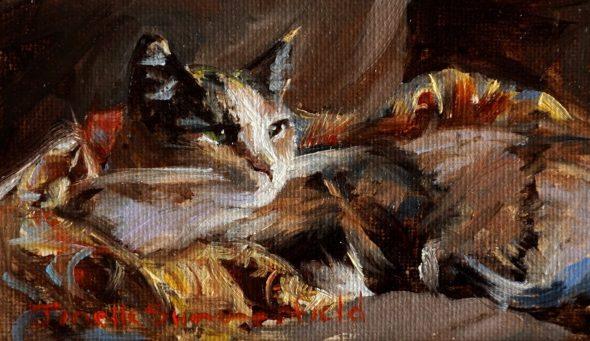 Jonelle Summerfield, Camo Cat