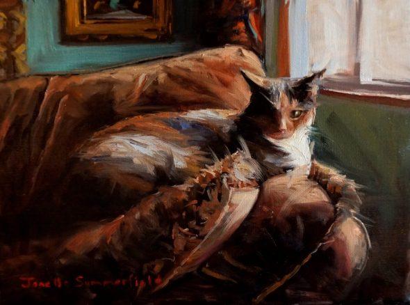 Jonelle Summerfield, Comfy Cat