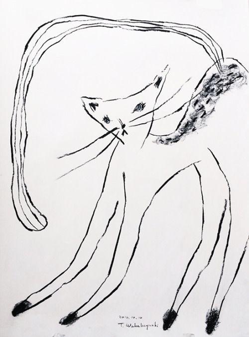 Tetsuhiro Wakabayashi, Cat Sketch