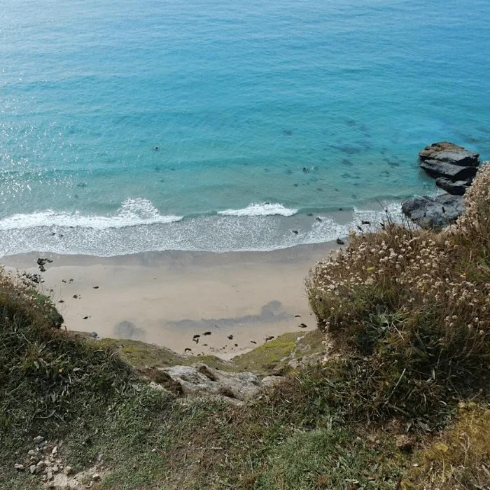 Looking down to sand and sea on the South West Coastpath from Porthtowan