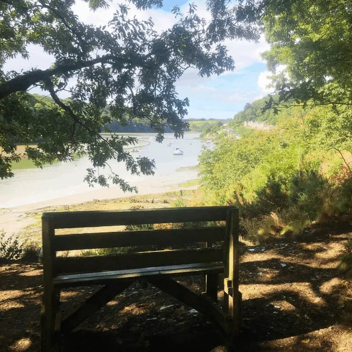 A bench overlooking the river at Malpas