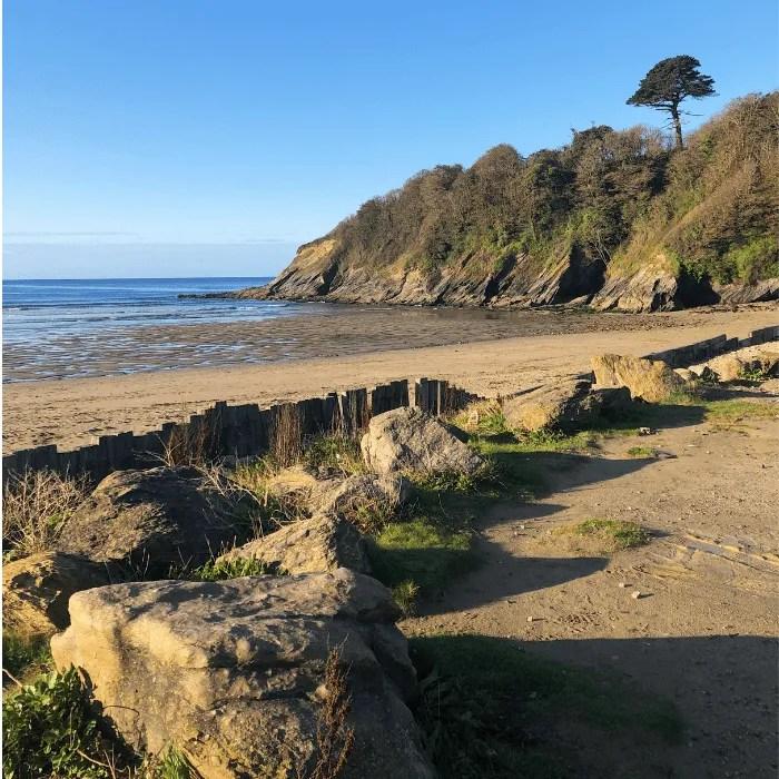 Caerhays or Porthluney Beach