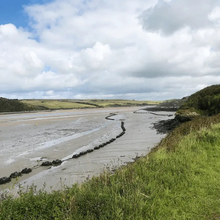 The Camel Trail and Estuary.