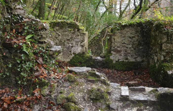 An old bit of wall with moss