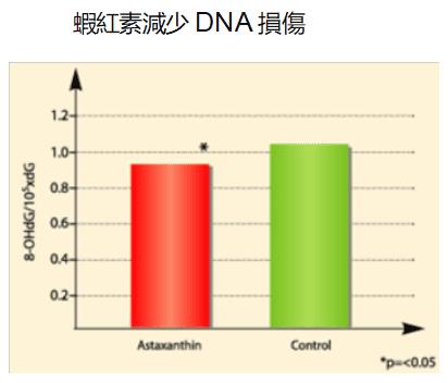 蝦紅素減少dna損傷